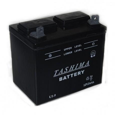 batterie u1l9 pour tracteur tondeuse autoport e. Black Bedroom Furniture Sets. Home Design Ideas