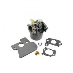 Carburateur 698056 BRIGGS et STRATTON