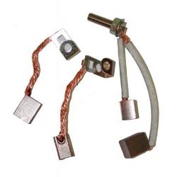 Kit jeu de charbons 490311 pour démarreurs BRIGGS & STRATTON munis d'une goupille d'arrêt pour le pignon