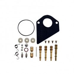 Kit de réparation carburateur BRIGGS ET STRATTON 495799 - 497535 - 494880 - 494384