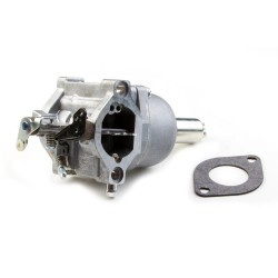 Carburateur BRIGGS et STRATTON 699916 - 590400 - 794294