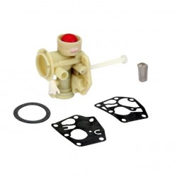 Carburateur BRIGGS et STRATTON 798758