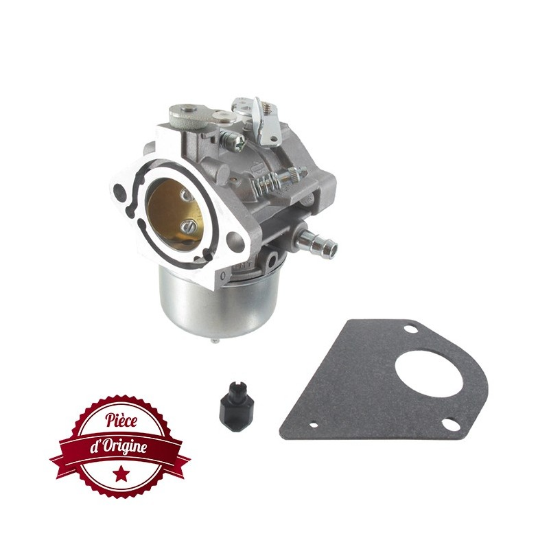 carburateur briggs et stratton 698171 697594 698973