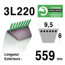 Courroie 9.5mm x 559mm - 3L22 - KEVLAR