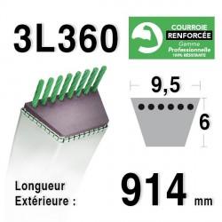Courroie 9.5mm x 914mm - 3L36 - KEVLAR