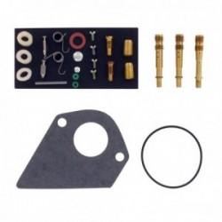 Kit réparation carburateur BRIGGS ET STRATTON 499220