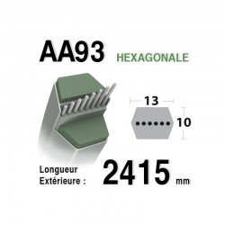VIKING COURROIE HEXAGONALE AA110 Référence AA110