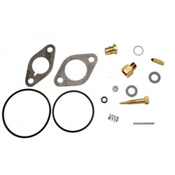Kit réparation Tecumseh 29155 / 29157 / 30359 / 31390