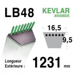 Courroie 16.5mm x 1231mm - LB48